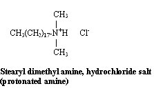 Stearyl dimethyl amine, hydrochloride salt (protonated amine)