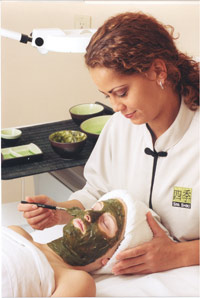 Spa Shiki Seaweed Rejuvenation Facial