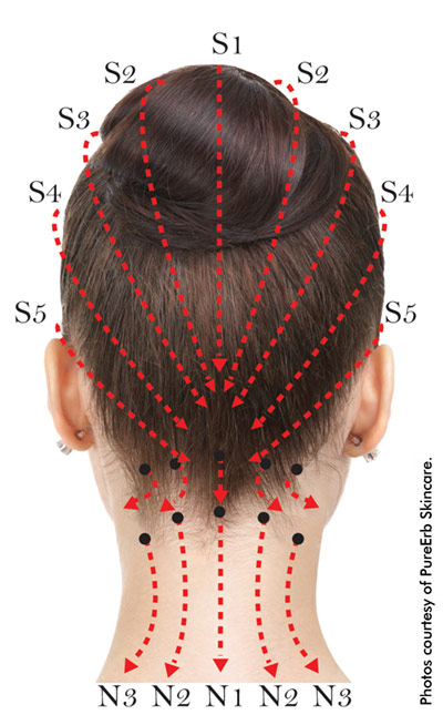 Scalp+and+neck+points+for+meridian+massage