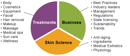 Breakdown of editorial content from Skin Inc.